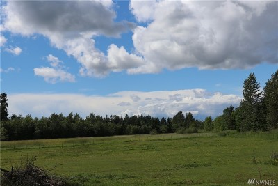 Whatcom County Residential Lots & Land For Sale: 7411 Bruce Rd