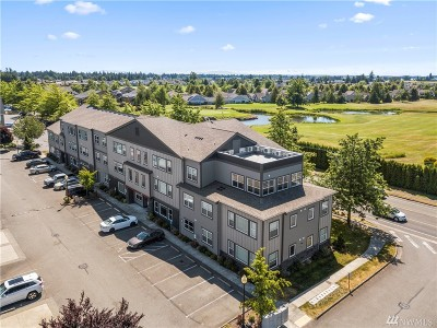 Lynden Condo/Townhouse For Sale: 8844 Depot Rd #B305