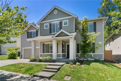 Snoqualmie Single Family Home For Sale: 9003 Weiting Ave SE