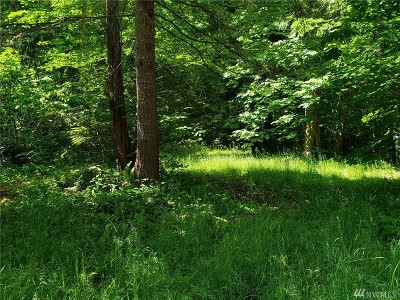 Residential Lots & Land For Sale: 18540 Surcingle Ct SE