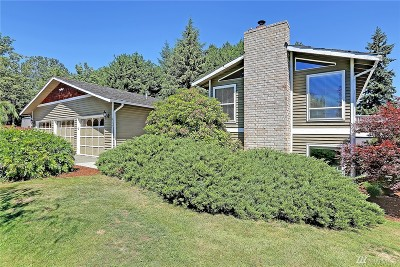 Bothell Single Family Home For Sale: 917 175th St SW