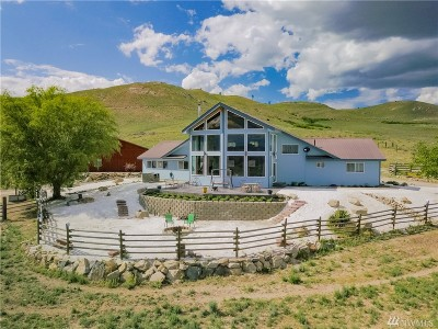 Pateros Single Family Home For Sale: 93 Curly Horse Dr