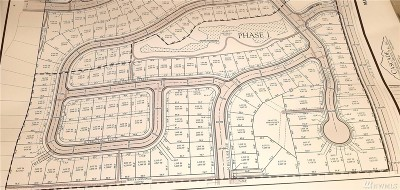 Ferndale Residential Lots & Land For Sale: 93 N Beulah Ave