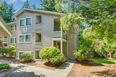 Kirkland Condo/Townhouse For Sale: 10004 NE 120th Lane #A103