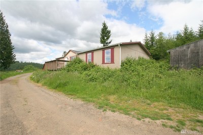 Centralia Single Family Home For Sale: 134 Farmview Dr