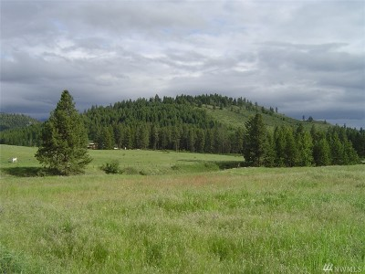Residential Lots & Land For Sale: Tonasket Cr. Rd
