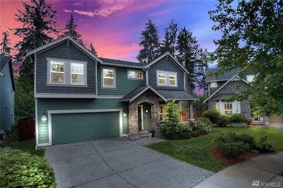 Lake Stevens Single Family Home For Sale: 509 125th Ave NE