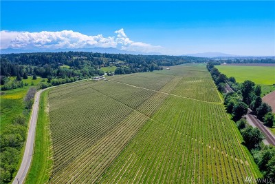 Skagit County Farm For Sale: 15860 Colony Rd