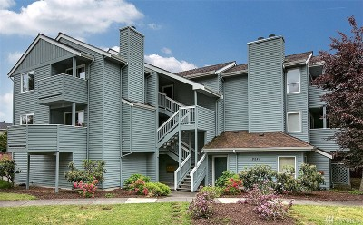 Seattle Condo/Townhouse For Sale: 9242 Woodlawn Ave N #D