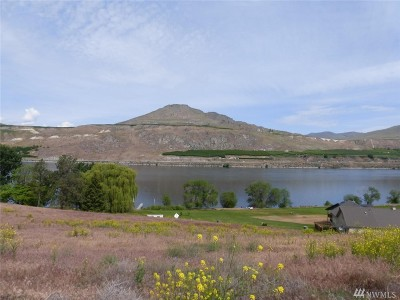 Douglas County, Chelan County Residential Lots & Land For Sale: 28 Elite Dr