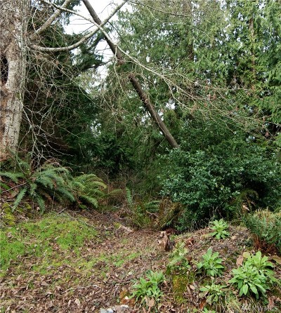 Langley Residential Lots & Land For Sale: 3 Lundberg Lot#3 St
