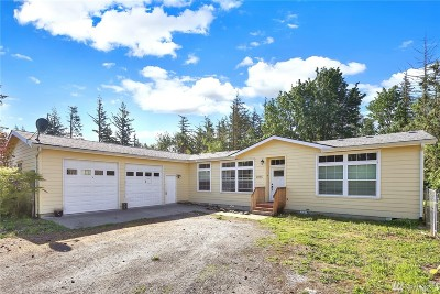 Everson, Nooksack Single Family Home For Sale: 2065 E Pole Rd