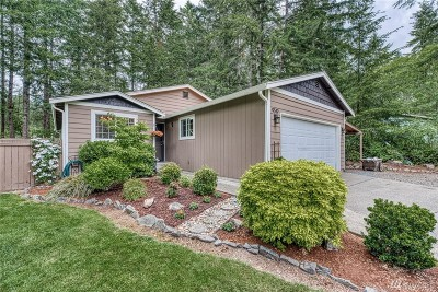 Gig Harbor Single Family Home For Sale: 9519 134th St Ct NW