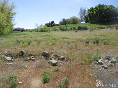 Residential Lots & Land For Sale: Summitview Ave #Lot 2