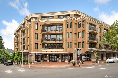 Bellevue Condo/Townhouse For Sale: 10047 Main St #405