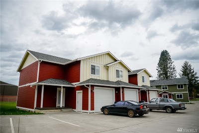 Everson , Nooksack, Sumas Multi Family Home For Sale: 809 Mead Ave #7-9
