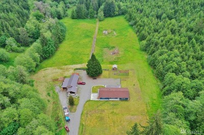 Grays Harbor County Single Family Home For Sale: 194 Gibson Creek Rd
