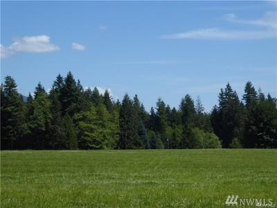 Stanwood Residential Lots & Land For Sale: 1 296th St NE