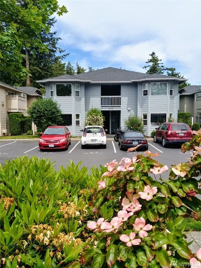 Whatcom County Condo/Townhouse For Sale: 3378 Northwest Ave #202