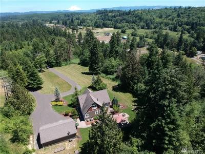 Centralia Single Family Home For Sale: 402 Troy Dr SE