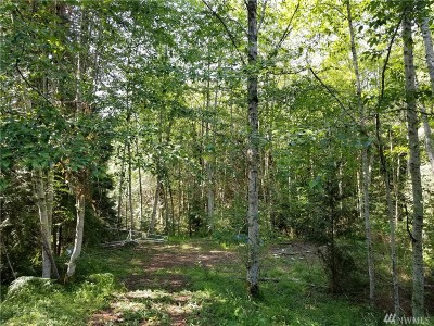 Shelton Residential Lots & Land For Sale: 40 E Willopa Place