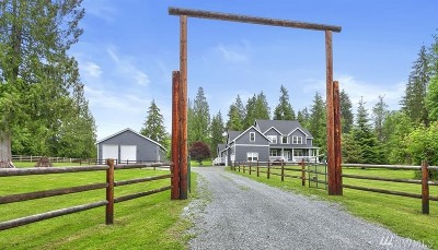 Snohomish Single Family Home For Sale: 617 165th Ave SE