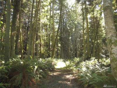 Langley Residential Lots & Land For Sale: Ashley Lp