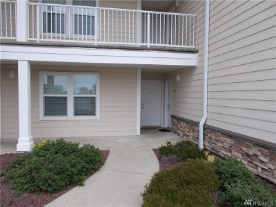 Grays Harbor County Condo/Townhouse For Sale: 1600 W Ocean Ave #1018