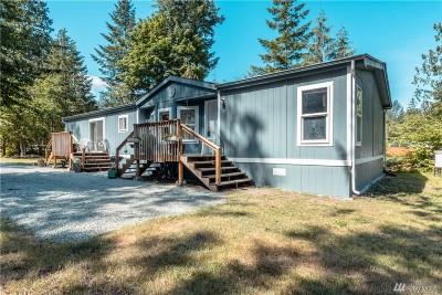 Skagit County Single Family Home For Sale: 46221 Baker Dr