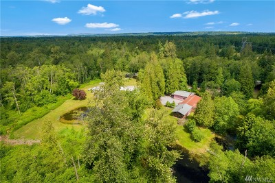 Custer Single Family Home For Sale: 3117 Birch Bay Lynden Rd