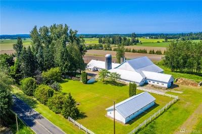 Whatcom County Farm For Sale: 8985 Sunrise Rd