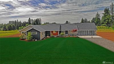 Lake Stevens Single Family Home For Sale: 5910 113th Ave NE