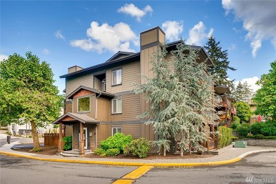 Mountlake Terrace Condo/Townhouse Contingent: 21307 48th Ave W #C203