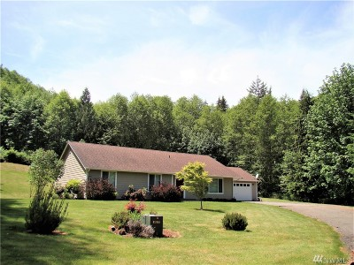 Lewis County Single Family Home For Sale: 185 Scenic Lane
