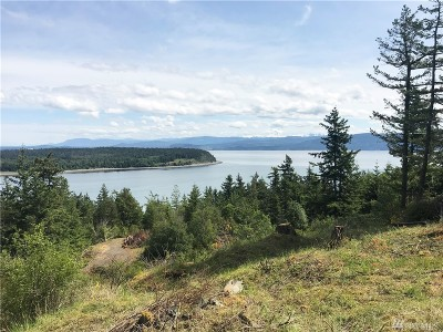 Whatcom County Residential Lots & Land For Sale: 3060 Mt Vista Dr