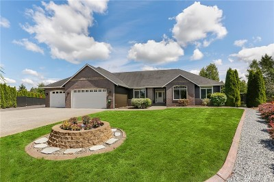 Lake Stevens Single Family Home For Sale: 8015 101 Ave NE