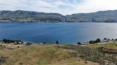 Chelan, Chelan Falls, Entiat, Manson, Brewster, Bridgeport, Orondo Residential Lots & Land For Sale: Apple Ave