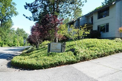 Bellevue Condo/Townhouse For Sale: 3848 Lake Washington Blvd SE #6B