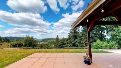 Auburn Single Family Home For Sale: 3465 Scenic Dr SE