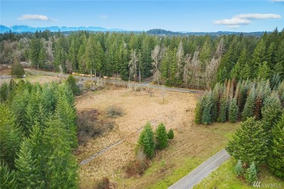 Tenino Residential Lots & Land For Sale: 5 143rd Ave SE