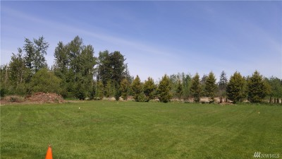 Whatcom County Residential Lots & Land For Sale: 50 Hannegan Rd