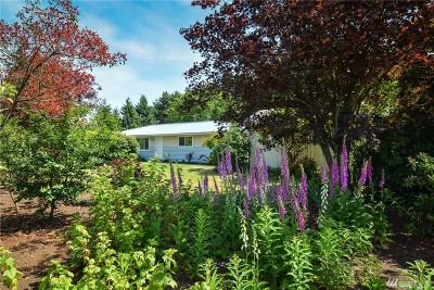 Rochester Single Family Home For Sale: 8915 178th Ave SW