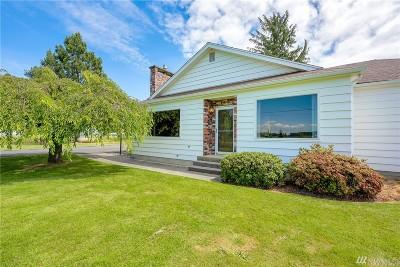 Whatcom County Single Family Home For Sale: 7468 Nooksack Rd