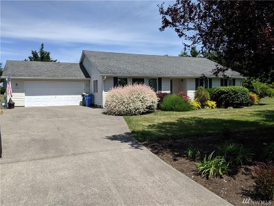 Rochester Single Family Home For Sale: 9134 Applegate Lp SW