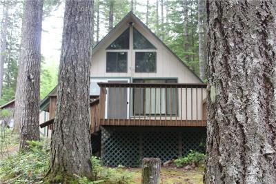 Mason County Single Family Home For Sale: 60 N Kimta Dr