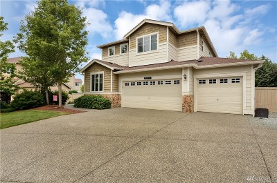 Stanwood Single Family Home For Sale: 28517 Kylie Dr