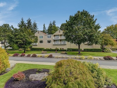 Issaquah Condo/Townhouse For Sale: 4152 Providence Point Dr SE #205