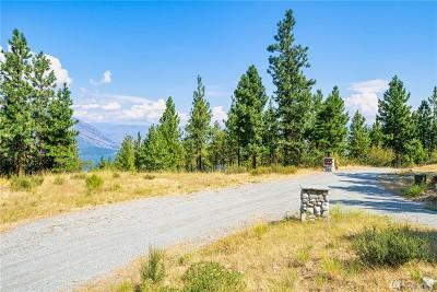 Chelan, Chelan Falls, Entiat, Manson, Brewster, Bridgeport, Orondo Residential Lots & Land For Sale: 131 Bear Ridge Lane