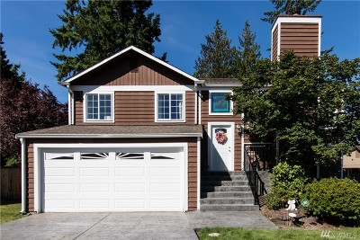 Bothell Single Family Home For Sale: 1729 225th St SE