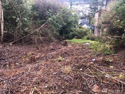 Grays Harbor County Residential Lots & Land For Sale: 828 Terrace Ave